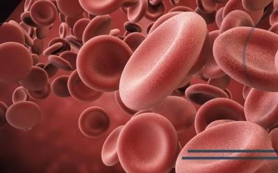 PRP, Lipogems, monociti: facciamo chiarezza sulla medicina rigenerativa